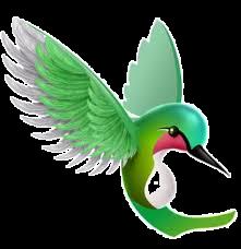 humming%20bird_edited.png