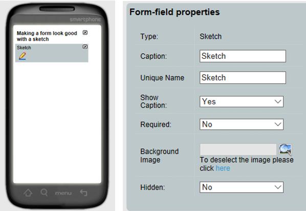 Data Capture Form using Sketch