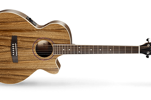 Cort SFX DAO Electro Acoustic Guitar