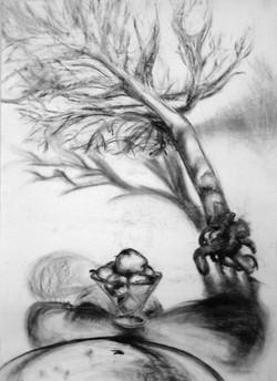 Draw+burning+tree+01.JPG