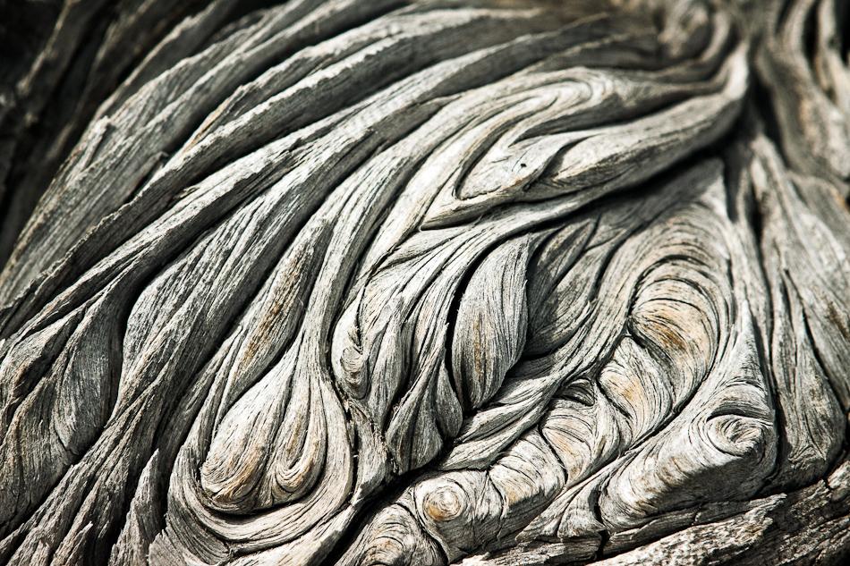 twisted+wood.jpg