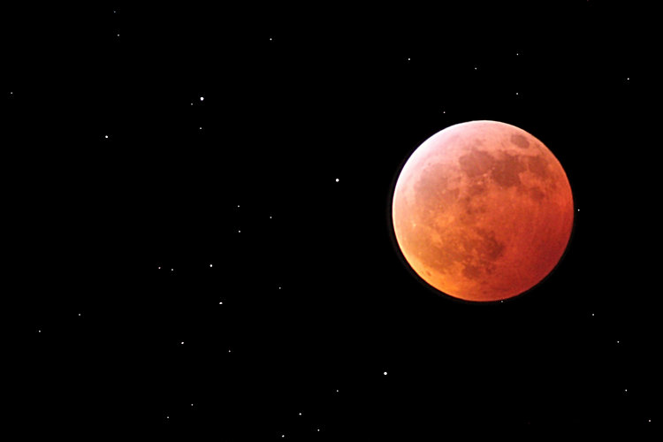 Total Lunar Eclipse of Jan 21, 2019 taken with an amateur telescope from a city balcony.