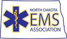 EMSA Logo PNG.png