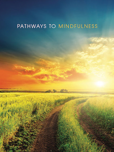 Pathways To Mindfulness Individual Mentoring Program