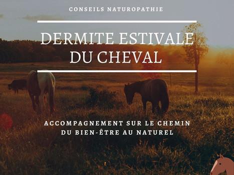 Comprendre la Dermite Estivale Récidivante des Équidés