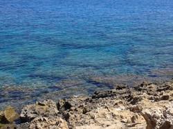 Севепный Кипр-Карпас-природа