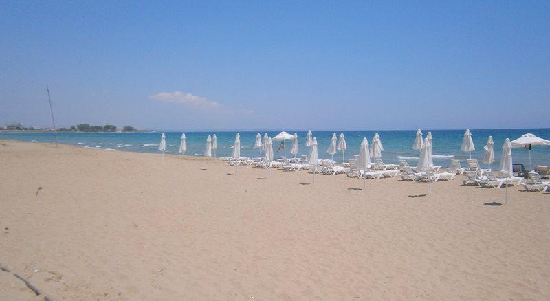 11904696_906511326082253_1846958560728070651_n_municipal beach