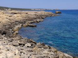 Северный Кипр-Карпас-природа