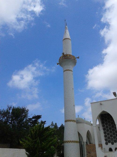 Северный-Кипр-Дипкарпас-мечеть