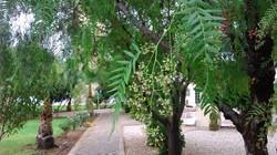 Искеле-Лонг бич-Резиденция Цезаря