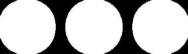 Logo shite (no boarder).png
