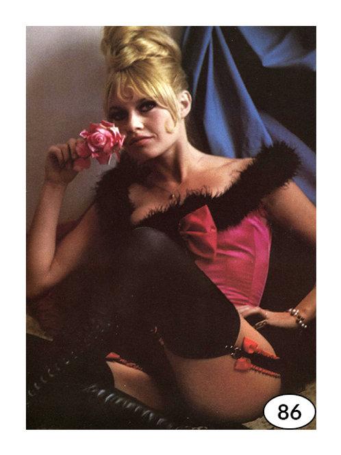 Vintage Picture Brigitte Bardot nr86 (90x60cm)