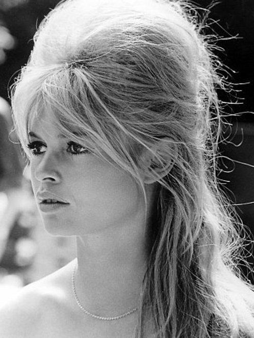 Brigitte Bardot Charm Nr 136 Alu panel