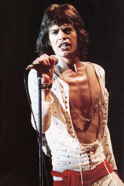 Mick Jagger Micro Colour Nr  102 Alu panel