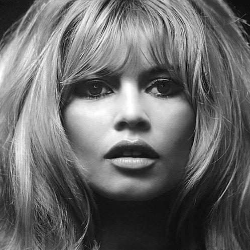 Brigitte Bardot Photo Model Nr 115 Alu panel