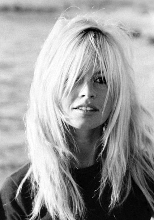 Brigitte Bardot Iconic Nr 132 Alu panel
