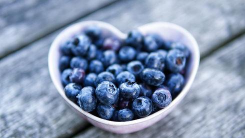 Nina Fischer Nutrition Strive for Progre