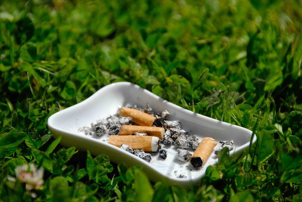 Cendrier avec des cigarettes dans l'herbe