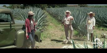IANSA - television chilena