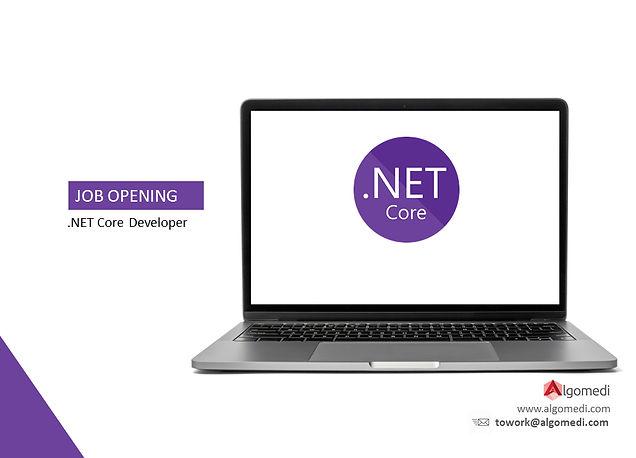 ilan_net_core.jpg