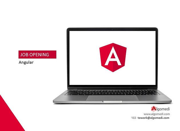 ilan_angular_developers.jpg