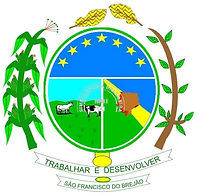 municipio-sao-francisco-do-brejao-brasao