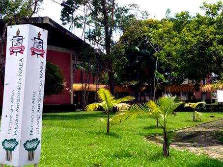NAEA e Rede Amazônia divulgam calendário de inscrições deferidas