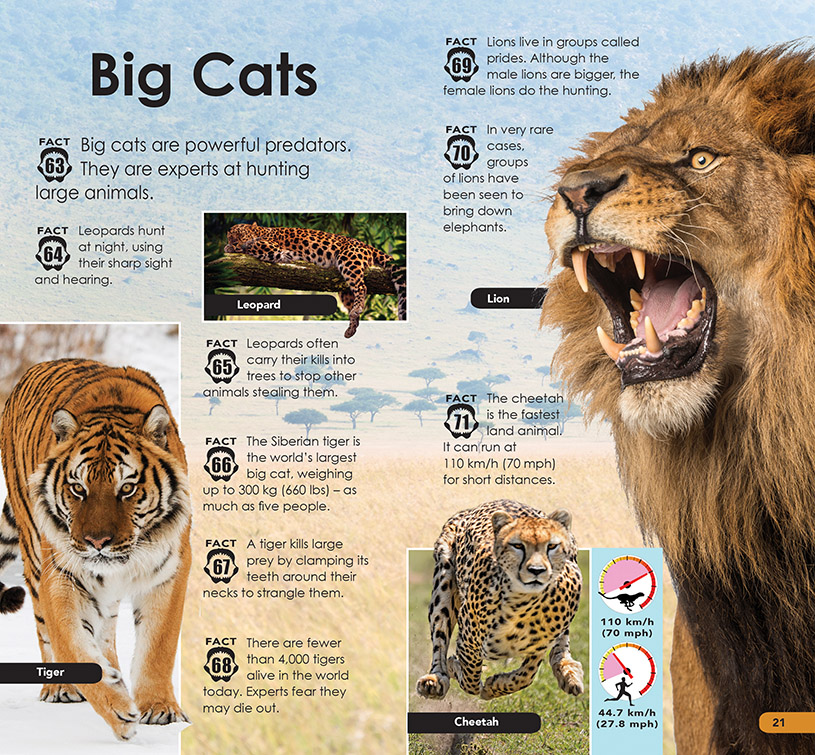 101 Dangerous Animals p20-21