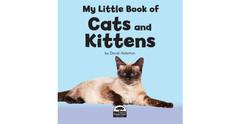 5 MLBO Cats - new pics copy