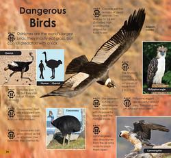 101 Dangerous Animals p24-25