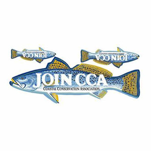 CCA Join CCA Trout Decal