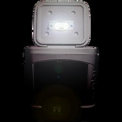 Includes a Motion Sensitive Light