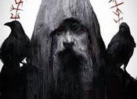 The Odin Bundle