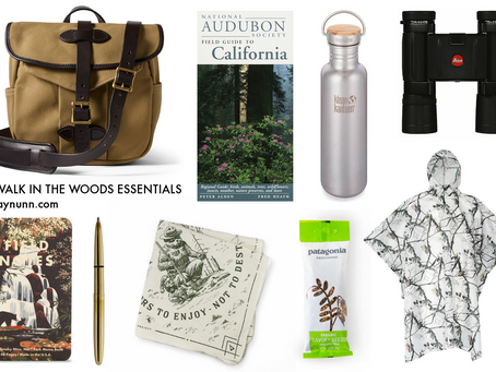 one guy's opinion on things to bring for a walk in the woods