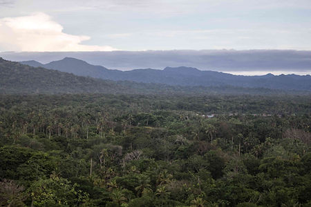 rainforest, panama, Guna Yala, Ana Carolina Rodrigues, soundart, artist residencies