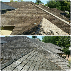Before & after cedar shake cleaning