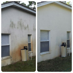 Rust and Mold Stains