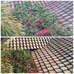 total roof restoration