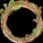 Wildlings Logo_edited.png