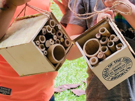 One kid-Friendly Way to Make a Bee House