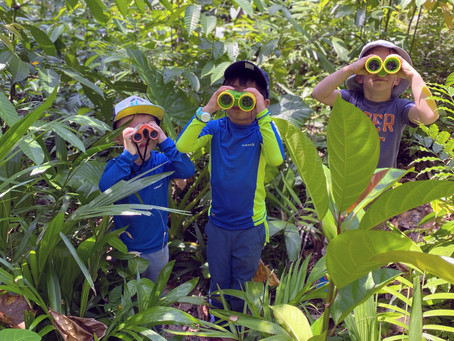 The Role of Play in Forest School
