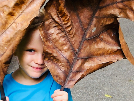Nature At Home Series: Up the FUN factor in your family nature walks