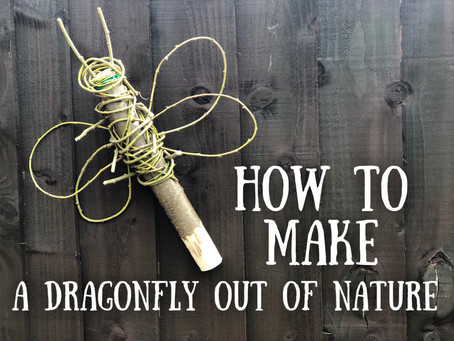How to make a dragonfly out of nature