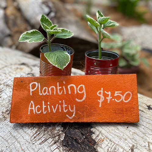 Nature Play Planting Activity