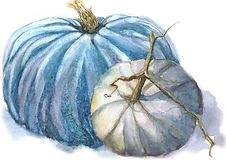 blue pumpkin_edited-1.jpg
