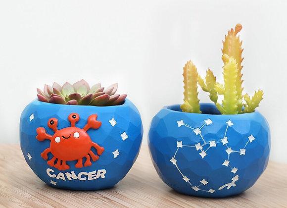 Zodiac Planters
