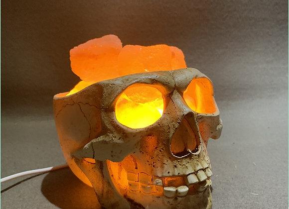 Himalayan Skull Salt Lamp