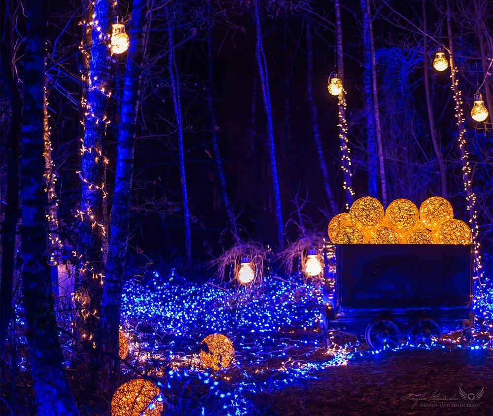 Haldenzauber - Wald der Blauen Blumen