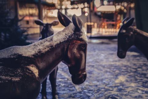 Rita McBride - Donkey's Way