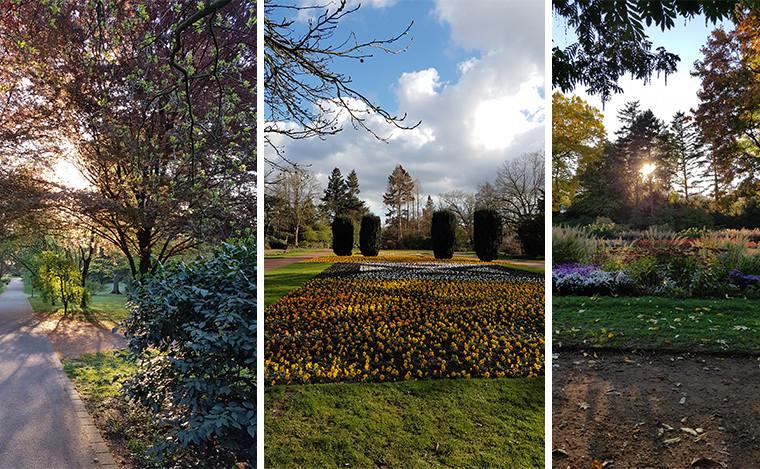 Der Bunte Garten in Mönchengladbach macht seinem Namen alle Ehre